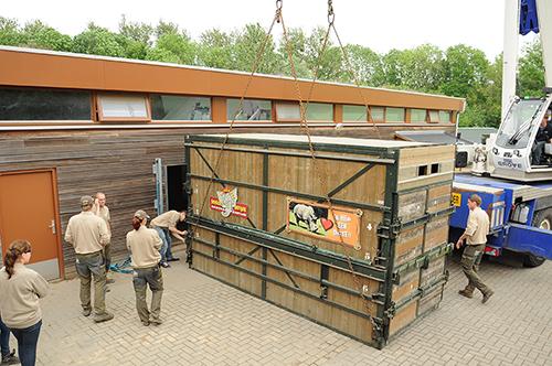 GaiaZOO - Transport Miguel neushoorn