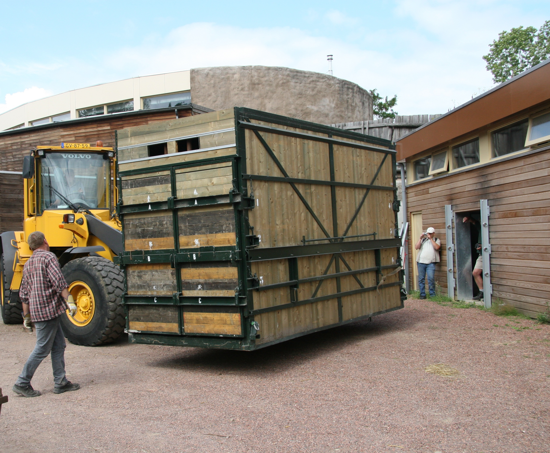 Transport neushoorn GaiaZOO