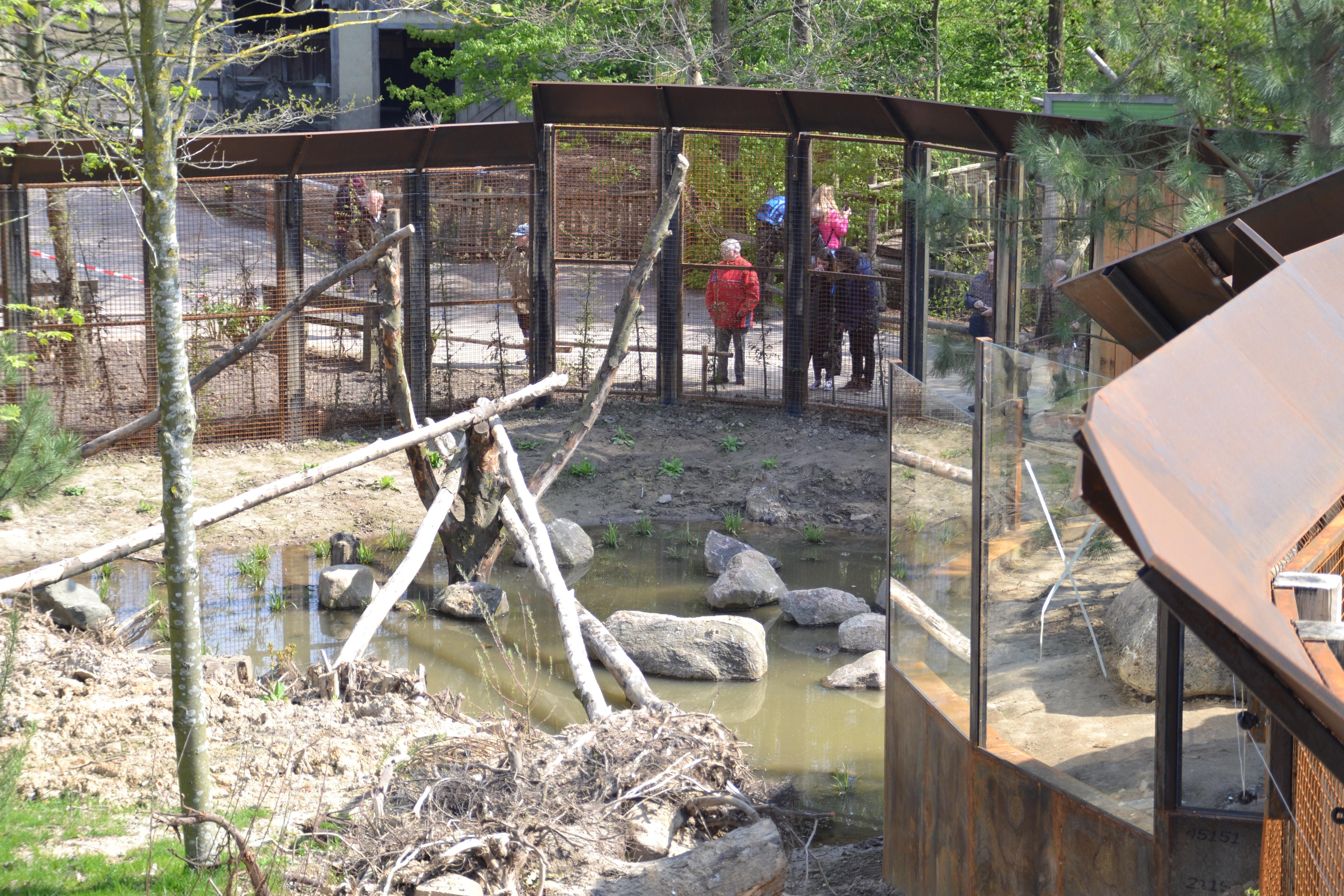 Bezoekers kijken naar lynxen in nieuwe verblijf