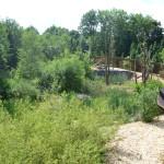 GaiaZOO - Berberapen - Nieuwe verblijf